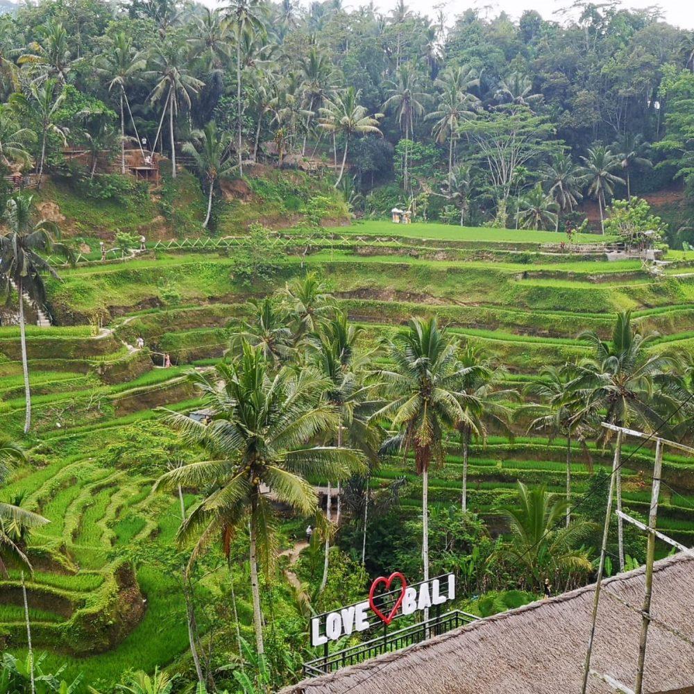 Así son nuestros viajes a Bali