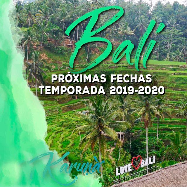 BALI – Temporada 2019-2020